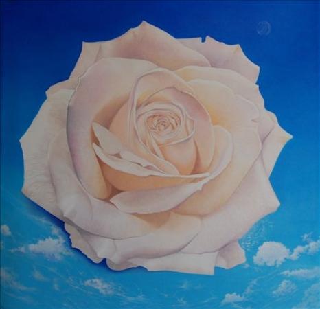 © Udo Becker - Ferien auf Sylt (cremefarbene Rose) - Aquarell