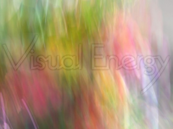 Bunter Strauß © Ute Sümenich - Visual Energy